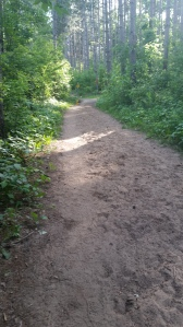 Sandy horse path from between Horseriders and Bluff. Not good running.